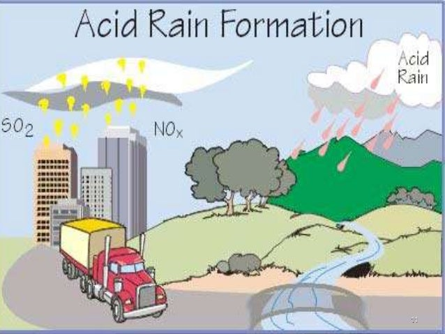 the various forms of pollution caused by acid rain Acid rain damage takes many forms and can have many outcomes generally, the precipitation causes alteration to the ph balance of whatever it touches, resulting in changes to the chemical makeup according to studies, these chemical alterations can have devastating effects on all types of ecosystems and may even pose danger to human health and .