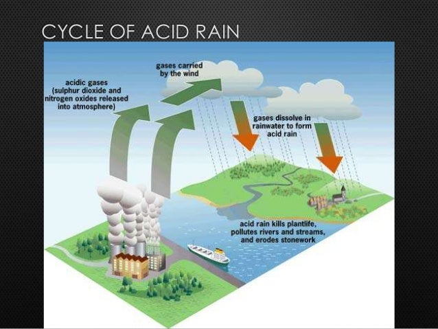 Current research on acid rain