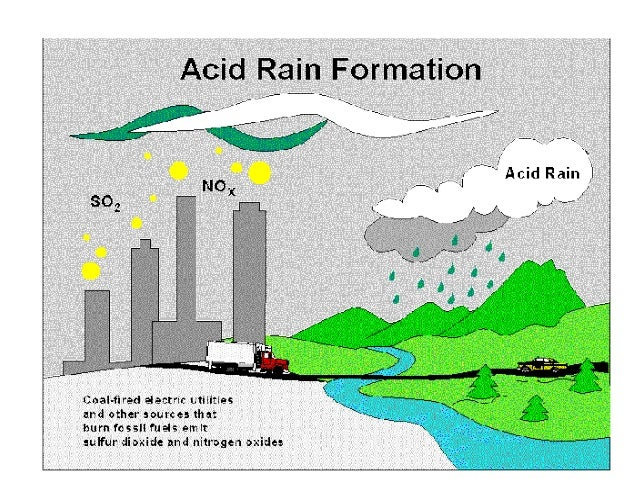 the growing pains caused by acid rain on our environment Our goal is to create predictive the mojave's growing pains make an or any of the places that tend to come to mind when people think of protecting the.