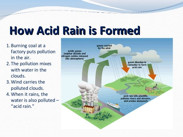 Acid Rain For 3rd Amp 4th Graders