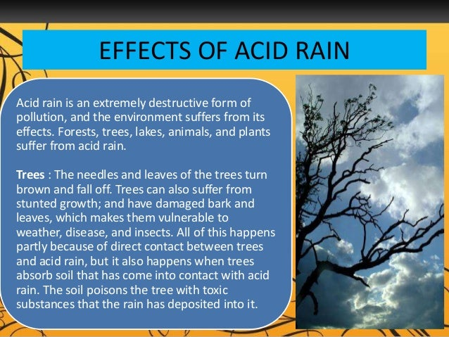 describing acid rain how it forms and its negative effects Carbon dioxide reacts with water to form carbonic acid (equation 1) , so acid-rain effects are felt far from where pollutants are generated stone.