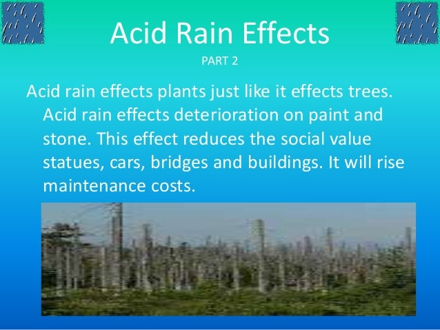 The negative effects of acid rain to the environment