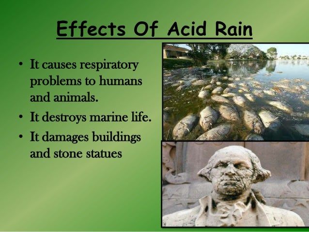 what are the causes and effects of acid rain