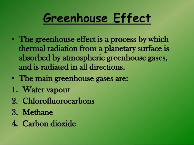 greenhouse effect essay questions