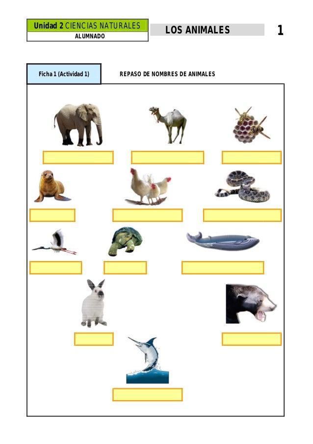 Unidad 2 CIENCIAS NATURALES ALUMNADO  Ficha 1 (Actividad 1)  LOS ANIMALES  REPASO DE NOMBRES DE ANIMALES  1