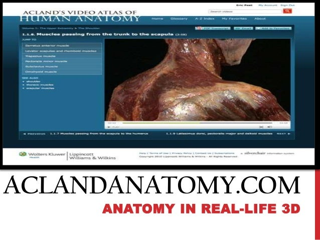 ACLANDANATOMY.COM ANATOMY IN REAL-LIFE 3D