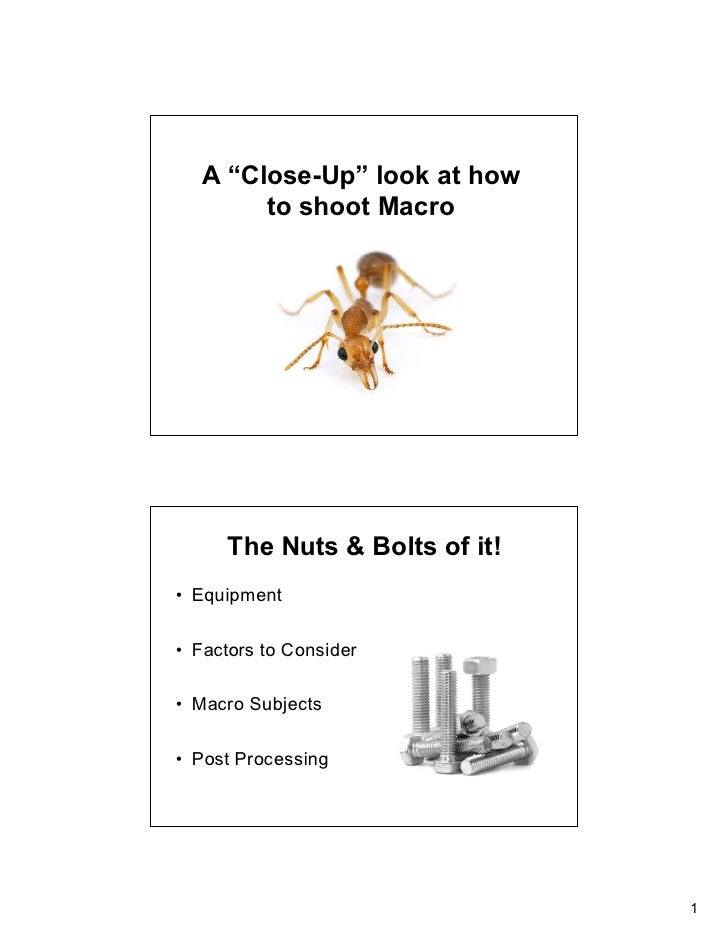 """A """"Close-Up"""" look at how         to shoot Macro          The Nuts & Bolts of it! • Equipment  • Factors to Consider  • Mac..."""