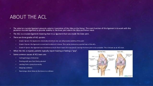 ACL Case Study: Stein 27 - ossur.ca