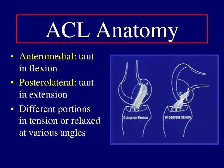 Female Intrinsic Factors: Anatomic<br />Wider Pelvis<br />Greater Hip Varus<br />Femoral Anteversion<br />Knee Valgus<br /...