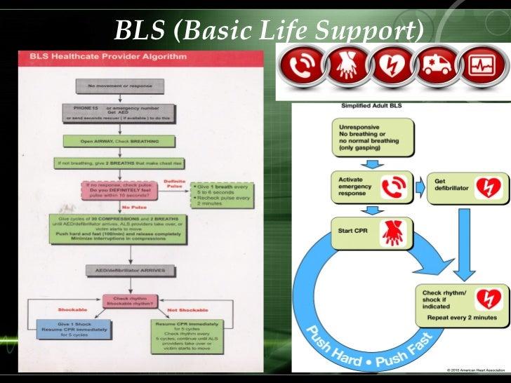 basic life support bls provider manual