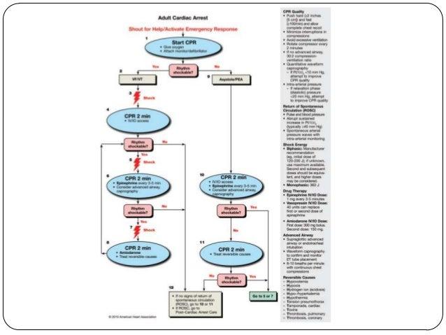 What medications can be absorbed through the trachea?  Lidocaine  Epinephrine  Atropine  Naloxone  Vasopressin