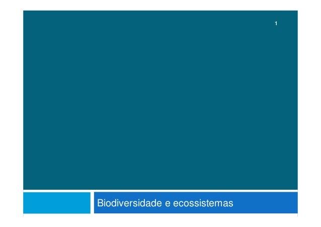 Biodiversidade e ecossistemas 1