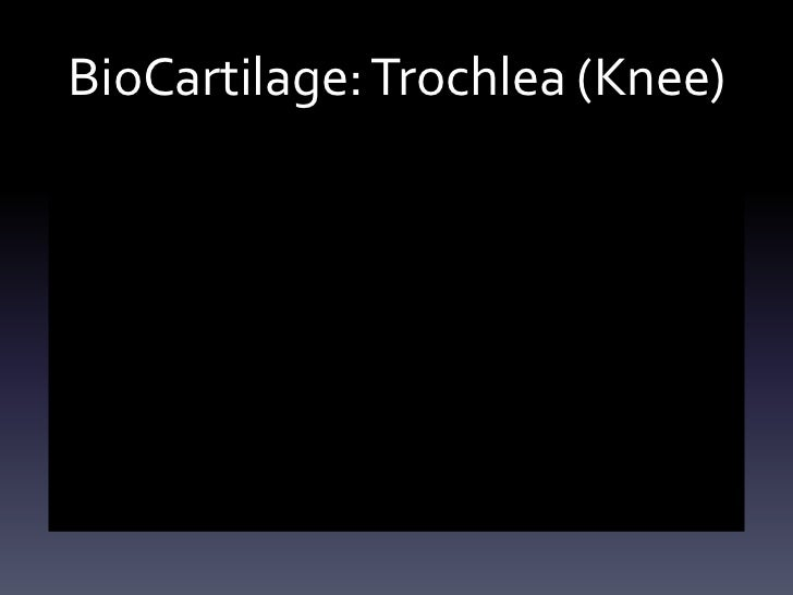 BioCartilage: Trochlea (Knee)