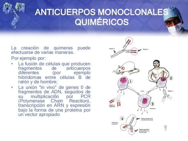 Quimérico definición y ejemplos