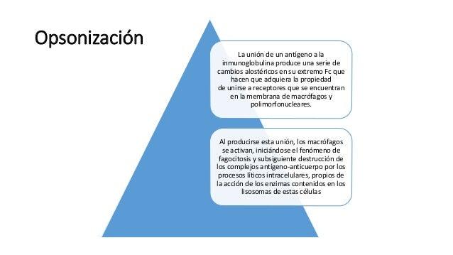 Ac monoclonal y opsonizacion