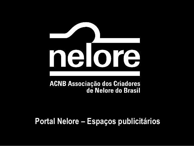 Portal Nelore – Espaços publicitários