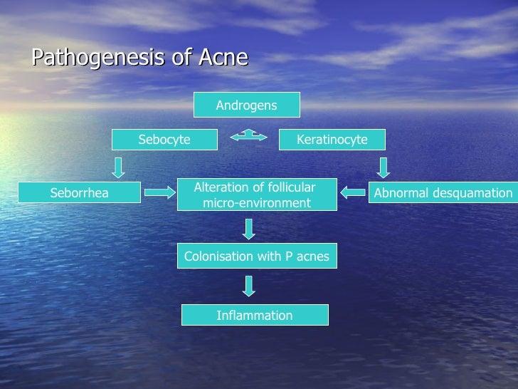 hyper 7 diagram managing acne  amp  acne scarring clearskincare  managing acne  amp  acne scarring clearskincare