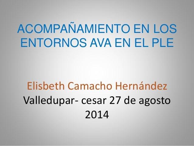 ACOMPAÑAMIENTO EN LOS ENTORNOS AVA EN EL PLE Elisbeth Camacho Hernández Valledupar- cesar 27 de agosto 2014