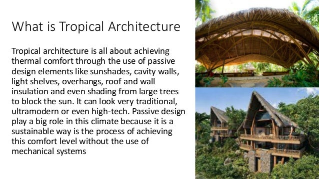 A comparative analysis of tropical architecture features