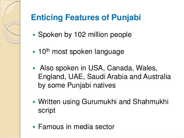 A Complete Guide to Punjabi Language Translation