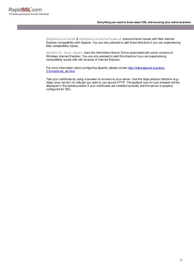 A Complete Rapidssl Guide On Securing Online Business With Ssl Certif