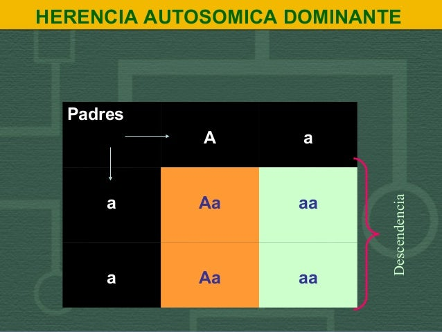 HERENCIA AUTOSOMICA DOMINANTE Padres A a a Aa aa a Aa aa Descendencia