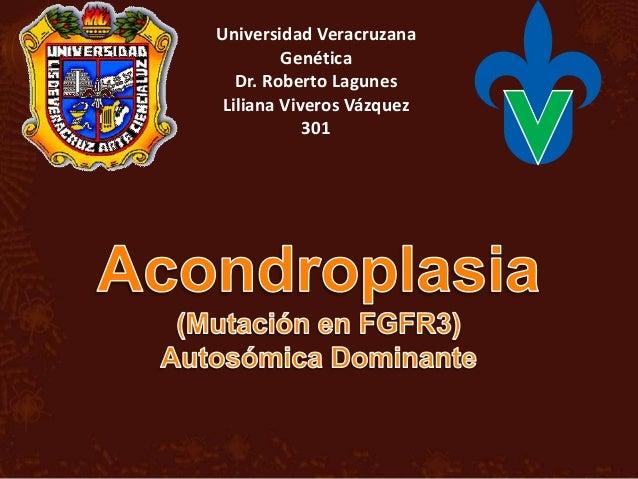 Universidad Veracruzana Genética Dr. Roberto Lagunes Liliana Viveros Vázquez 301
