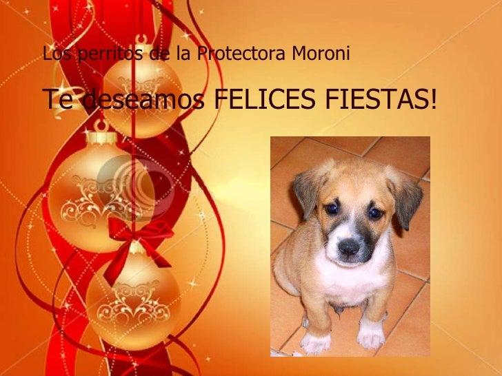 Los perritos de la Protectora Moroni Te deseamos FELICES FIESTAS!