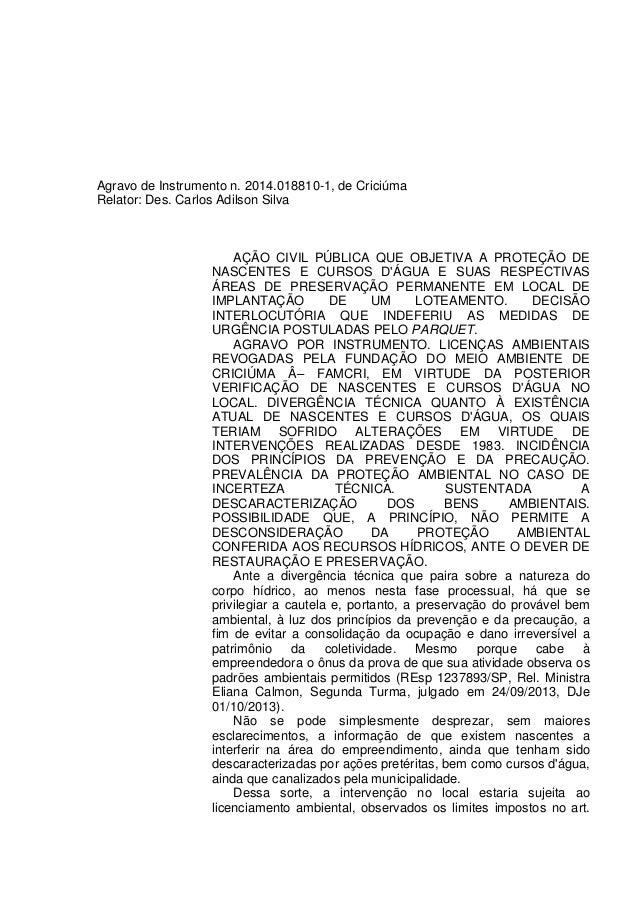 Agravo de Instrumento n. 2014.018810-1, de Criciúma Relator: Des. Carlos Adilson Silva AÇÃO CIVIL PÚBLICA QUE OBJETIVA A P...