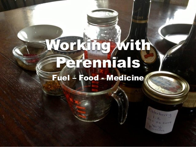 Working with Perennials Fuel – Food - Medicine