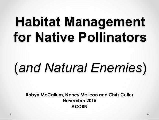 Habitat Management for Native Pollinators   (and Natural Enemies) Robyn McCallum, Nancy McLean and Chris Cutler November...