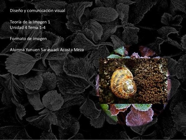 Diseño y comunicación visual  Teoría de la Imagen 1  Unidad 4 Tema 1-4  Formato de imagen  Alumna Yunuen Sarasuadi Acosta ...