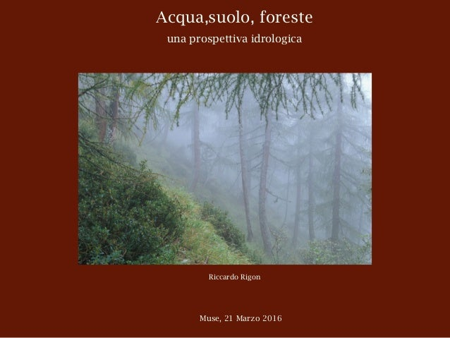 Acqua,suolo, foreste una prospettiva idrologica Riccardo Rigon Muse, 21 Marzo 2016