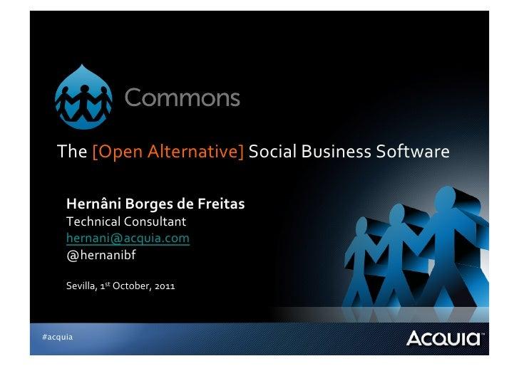 The [Open Alternative] Social Business Software      Hernâni Borges de Freitas      Technical Consul...