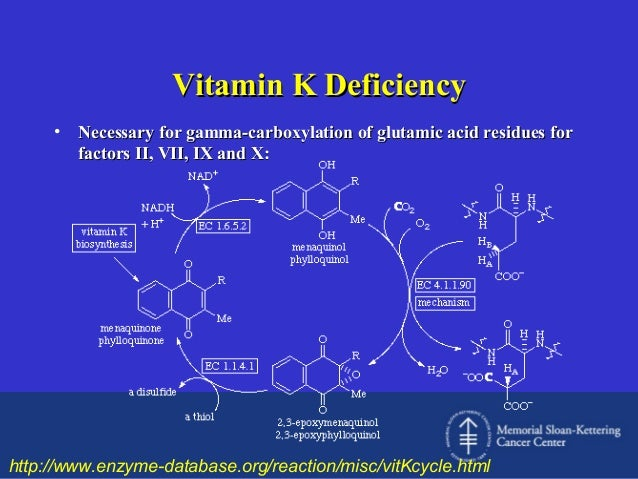 Vitamin K Deficiency •  Necessary for gamma-carboxylation of glutamic acid residues for factors II, VII, IX and X:  http:/...