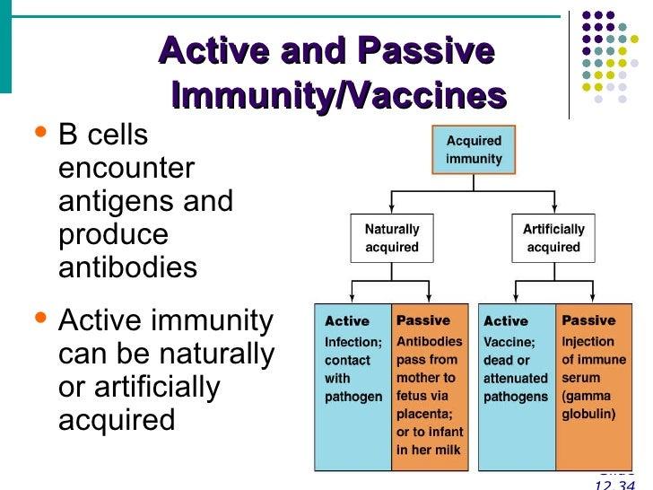 acquired-immunity-16-728.jpg?cb=1276008016