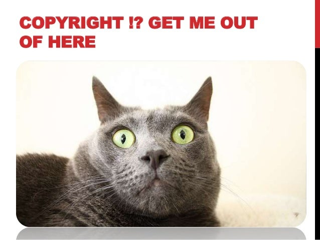 Librarians' experiences of copyright in their professional lives Slide 2