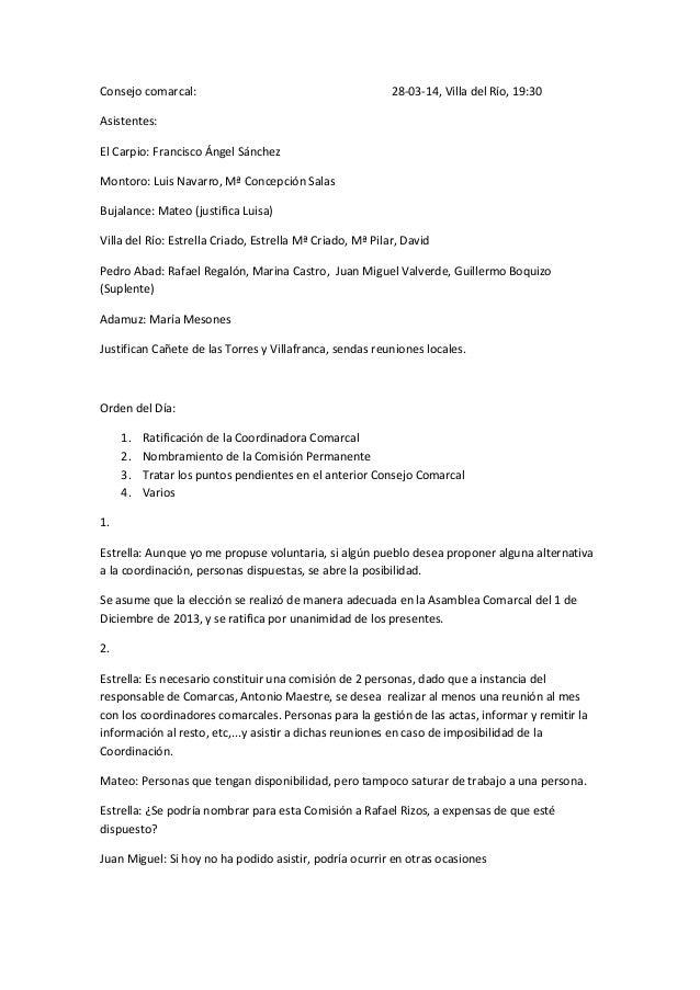 Acta consejo comarcal 28 03-14