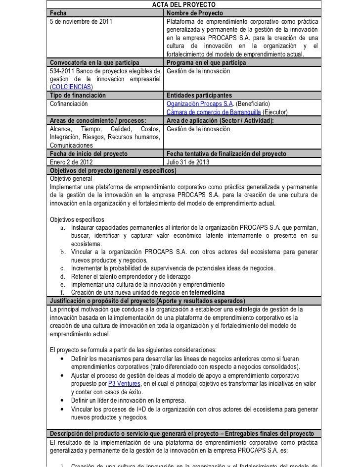 Acta de constituci n del proyecto for Ejemplo proyecto completo pmbok