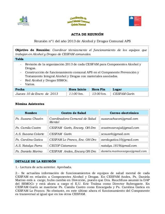 ACTA DE REUNIÓNReunión nº1 del año 2013 de Alcohol y Drogas Comunal APSObjetivo de Reunión: Coordinar técnicamente el func...