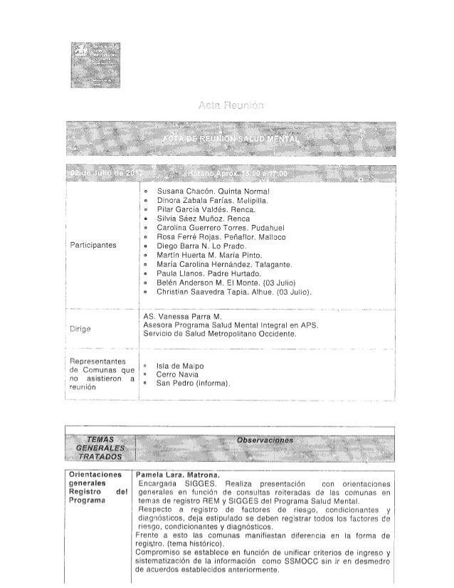 Acta Reunión Programa Salud Mental APS, SSMOc, 02 Julio 2013