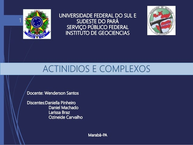 UNIVERSIDADE FEDERAL DO SUL E SUDESTE DO PARÁ SERVIÇO PÚBLICO FEDERAL INSTITUTO DE GEOCIENCIAS Marabá-PA 1 Docente: Wender...