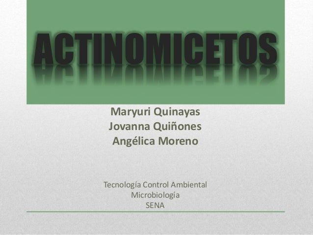 ACTINOMICETOS  Maryuri Quinayas  Jovanna Quiñones  Angélica Moreno  Tecnología Control Ambiental  Microbiología  SENA