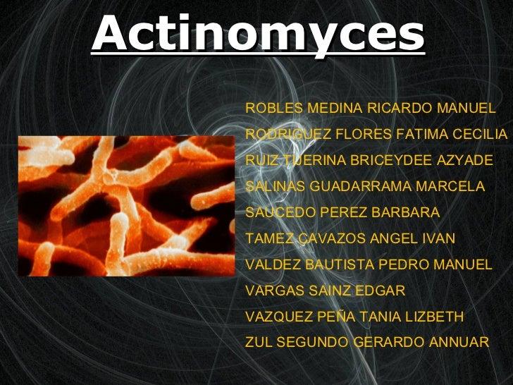 Actinomyces ROBLES MEDINA RICARDO MANUEL RODRIGUEZ FLORES FATIMA CECILIA  RUIZ TIJERINA BRICEYDEE AZYADE  SALINAS GUADARRA...
