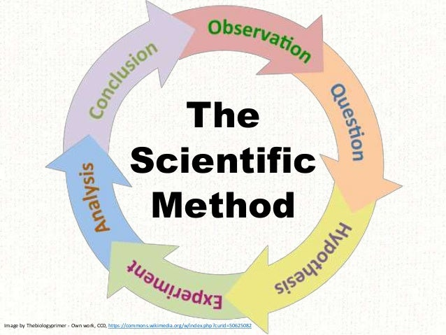 The Scientific Method Image by Thebiologyprimer - Own work, CC0, https://commons.wikimedia.org/w/index.php?curid=50625082