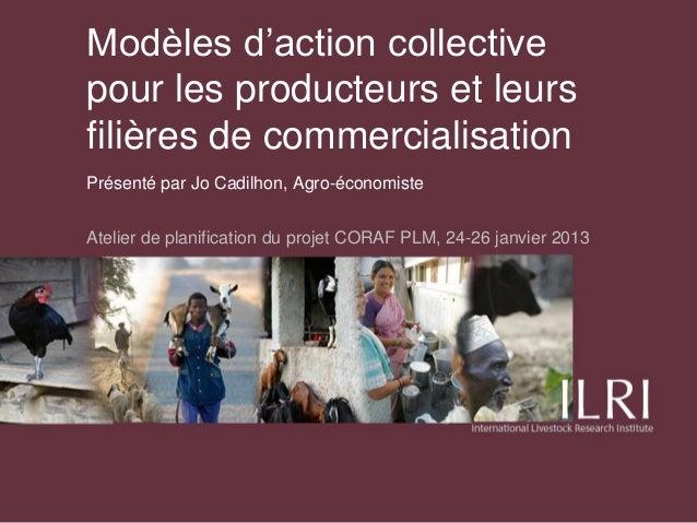 Modèles d'action collectivepour les producteurs et leursfilières de commercialisationPrésenté par Jo Cadilhon, Agro-économ...