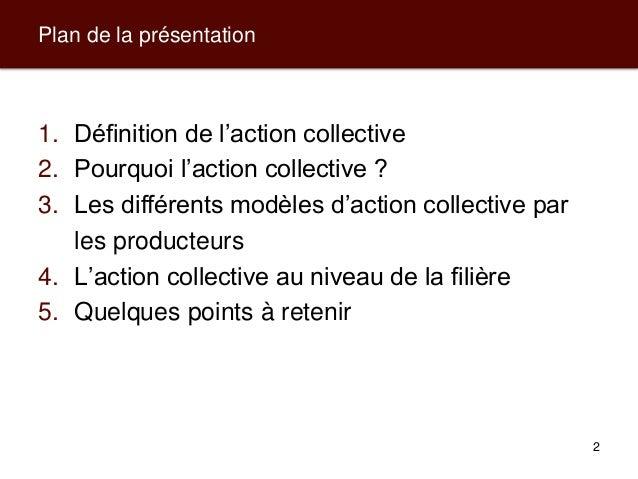Modèles d'action collective pour les producteurs et leurs filières de commercialisation Slide 2
