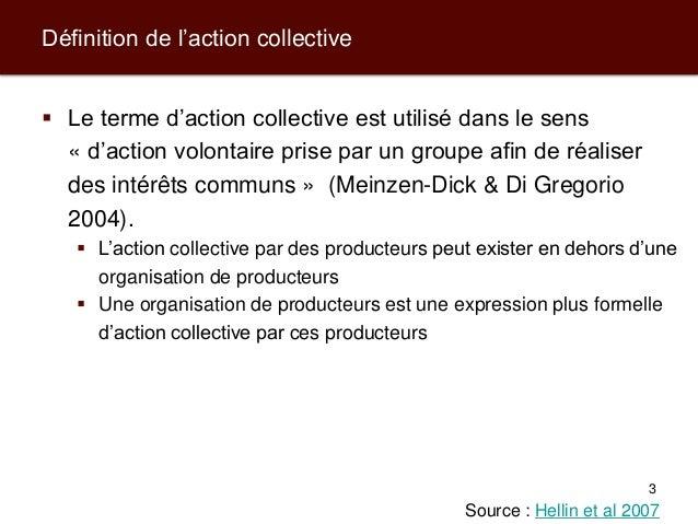 Modèles d'action collective pour les producteurs et leurs filières de commercialisation Slide 3