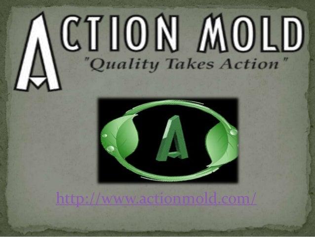 http://www.actionmold.com/