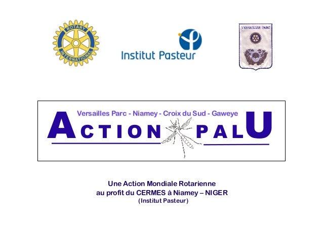 AC T I O N P A LU Une Action Mondiale Rotarienne au profit du CERMES à Niamey – NIGER (Institut Pasteur) AC T I O N P A LU...